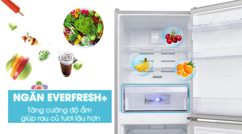 Tủ lạnh Beko 340L